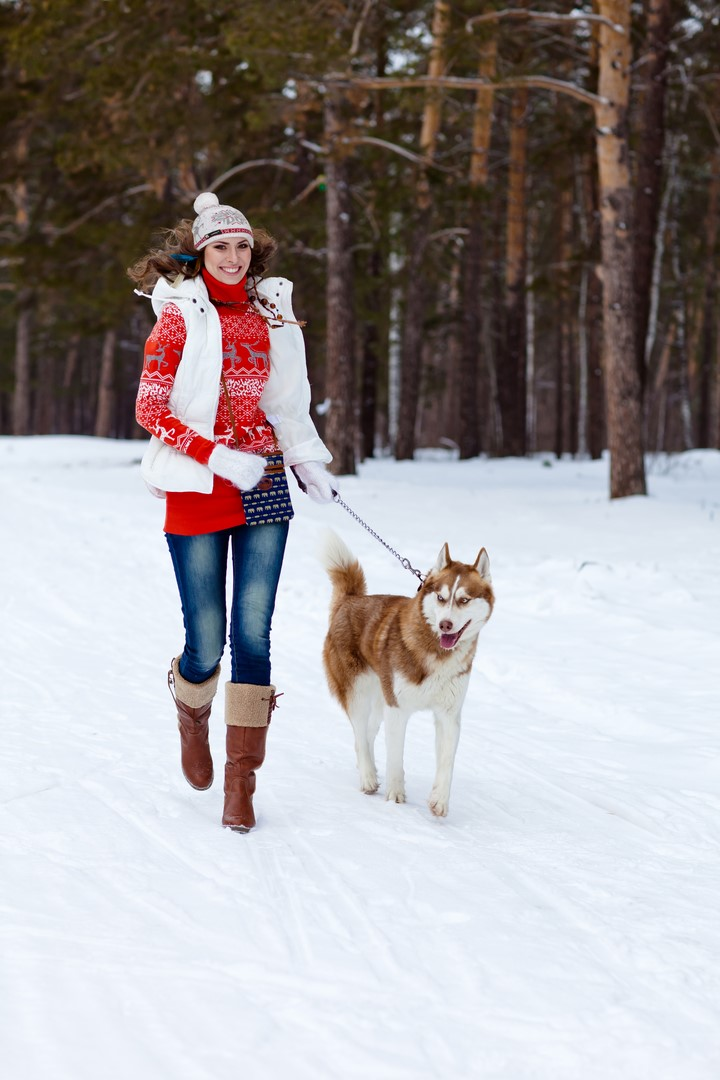 Happy woman playing with siberian husky dog in winter forest